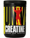 Universal Nutrition  Creatine Powder (500 гр )
